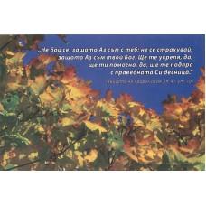 Картичка - Исая 41:10